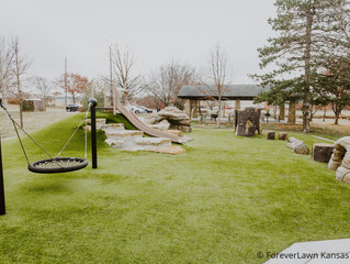 Playground Grass Featured Play Solutions