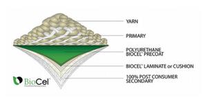 BioCel Technology