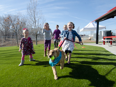 Beneful Dream Dog Park, kids playing on artificial turf