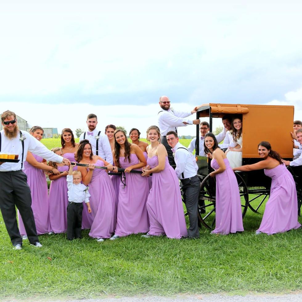 wedding party, wedding, bride, groom