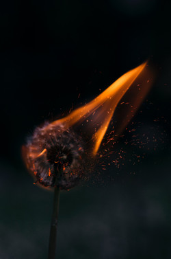 Intermediate Dark Magic and Spirit Use (6w)