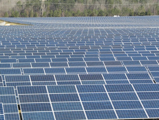 Renewable energy to hit 9 percent of U.S. total in 2017
