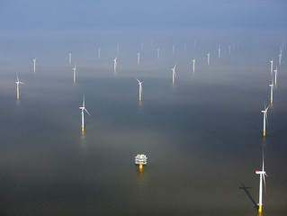Can America's first floating wind farm shake off environmental concerns?