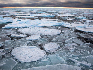 Arctic's strongest sea ice breaks up for first time on record