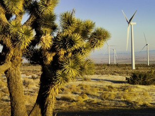 San Diego's Climate Action Plan Making Progress—And Creating Jobs