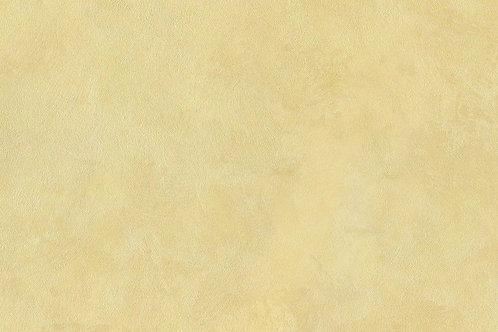 Сета (Seta 11-04)