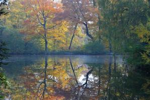 Kenwood Lake