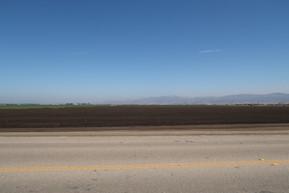 California - Salinas