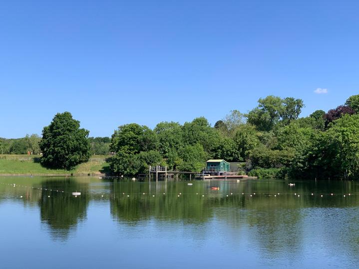 Men's Bathing Pond, Hampstead Heath