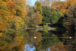 Hampstead Heath Mixed Bathing Pond