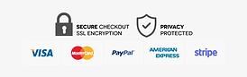 413-4138236_safe-checkout-icons-portable