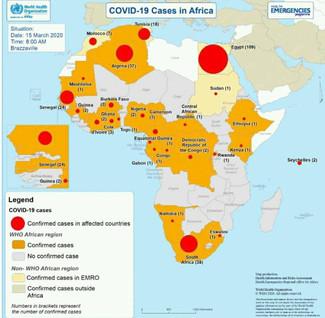 El virus también ha afectado a Mozambique