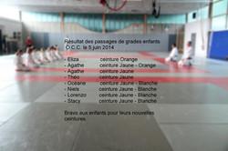 Passages de grades enfants juin 2014