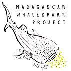 Madagascar Whale Shark Project Nosy Be L