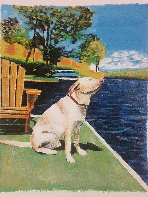 8 x 10 Commissioned Pet Portrait