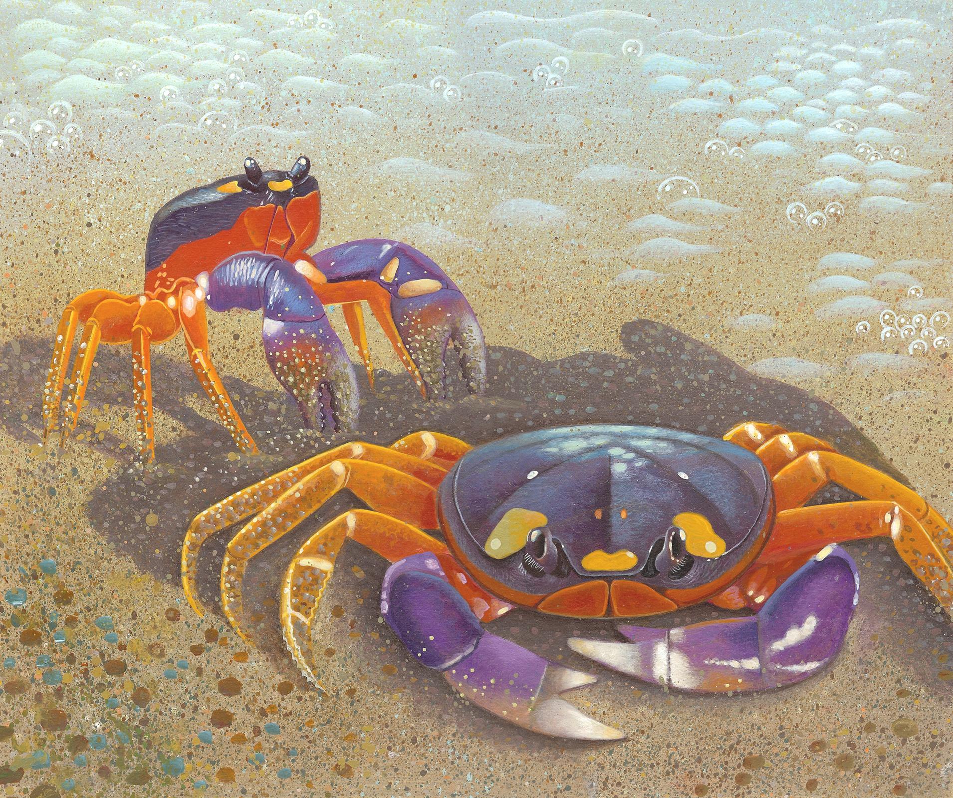halloween crabs