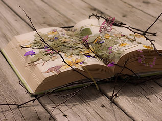 Beautiful-Book-Wallpaper-Desktop.jpg