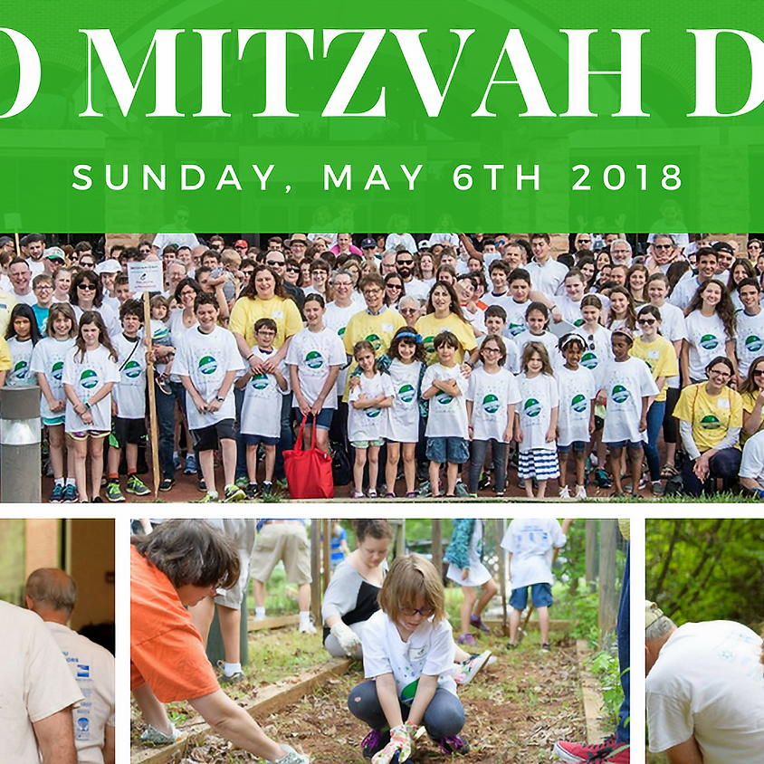 GSO Mitzvah Day 2018