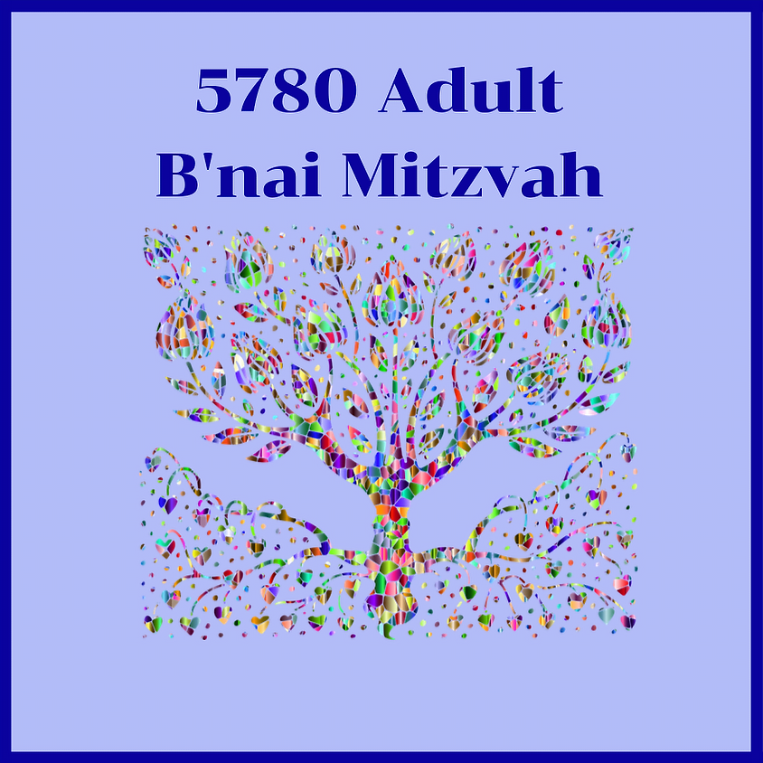 Adult B'nai Mitzvah Class