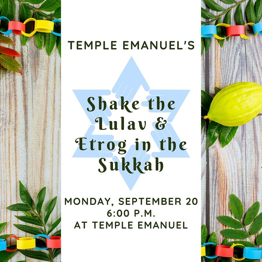 Shake the Lulav & Etrog in the Sukkah