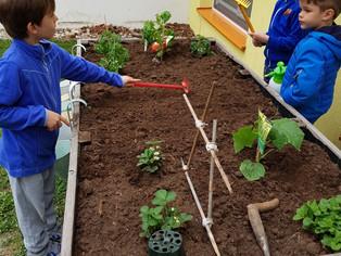 Kleine Gärtner im Kindergarten