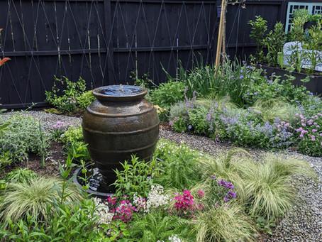 A Garden Designers Home Garden: Part 3