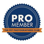 MEMBERBADGE Pet Photographer.png
