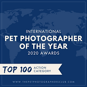 Pet Photographer Top 100 Action Badge.pn