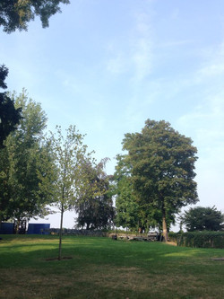 Parc du Beffroi de Mons
