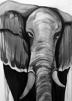 Elephant-DesignsByDevante