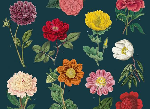 Botany Napkin Set (4)