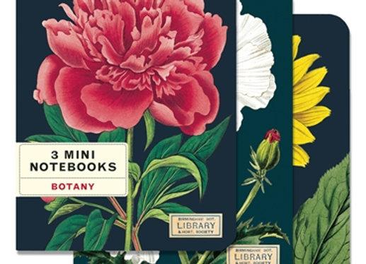 3 Mini Notebooks (Botany)