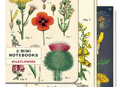 3 Mini Notebooks (Wildflowers)