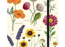 Large Wildflowers Journal