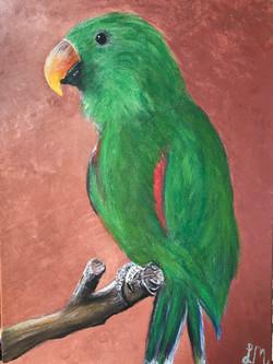 Bob's Bird