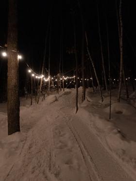 Sentiers en soirée.jpeg