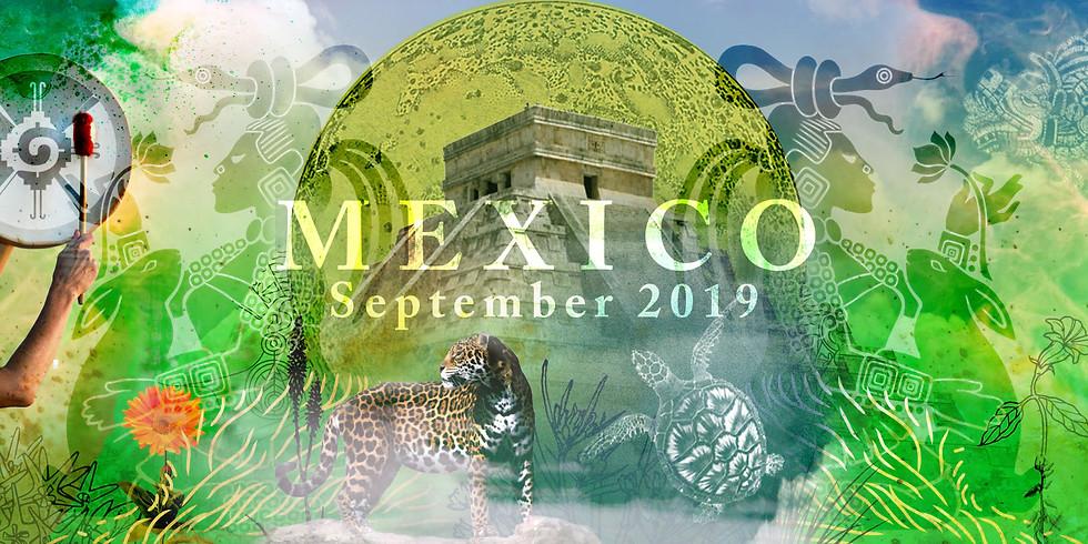 Mayan Medicina: Mexico 2020
