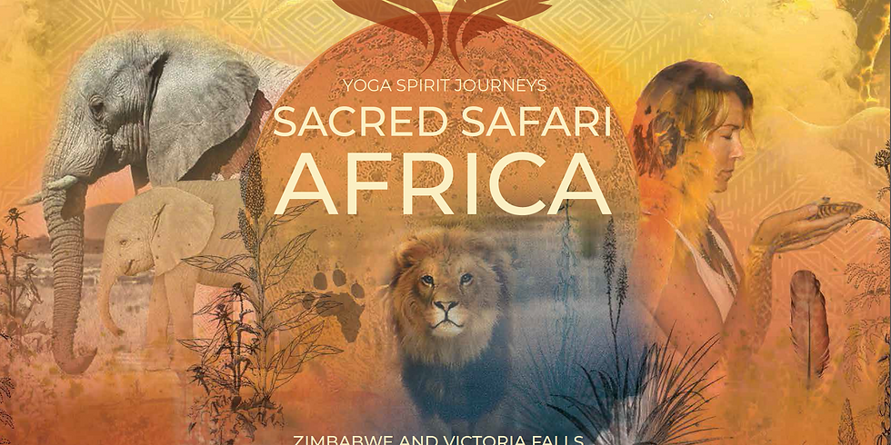 Sacred Safari: Zimbabwe, Africa 2020