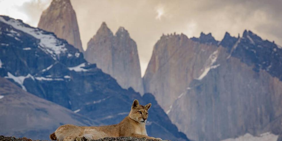 Patagonia Vision Quest