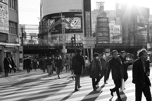 Shinjuku Crossing B&W
