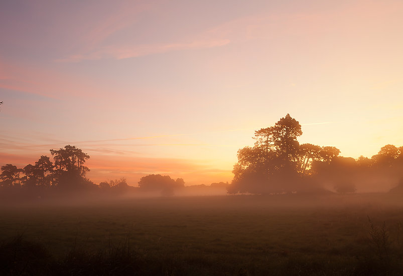 Pershore Park sunrise, Worcestershire