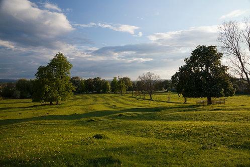Clopton Hills Spring- Stratford-upon-Avon