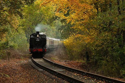Severn Valley Steam Train, Worcestershire