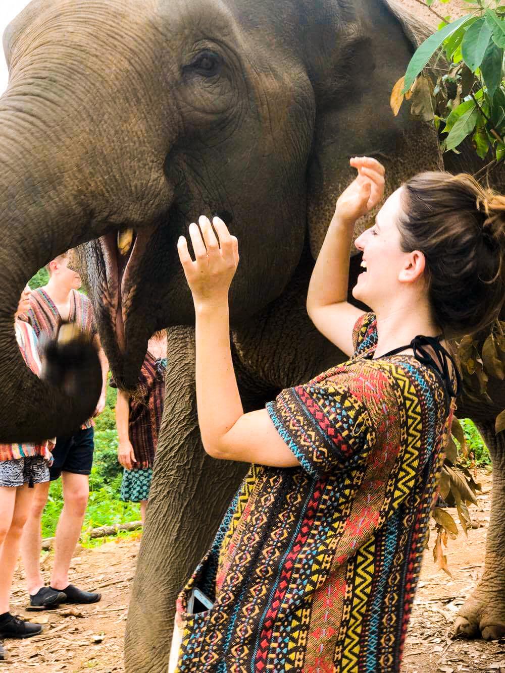 Me hand feeding an elephant at Elephant Jungle Sanctuary