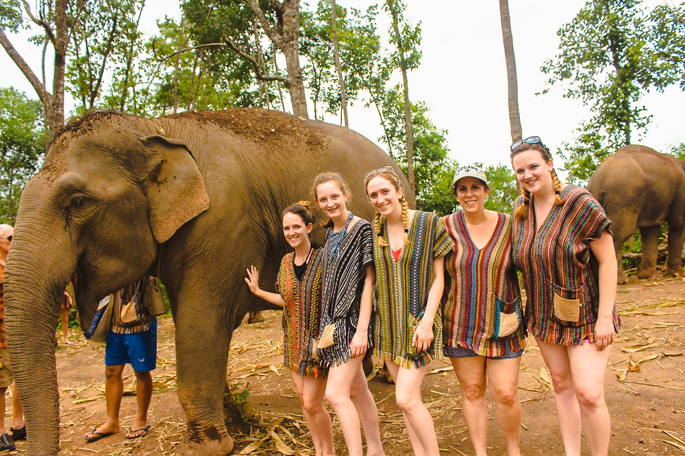 My family and me with an elephant at Elephant Jungle Sanctuary