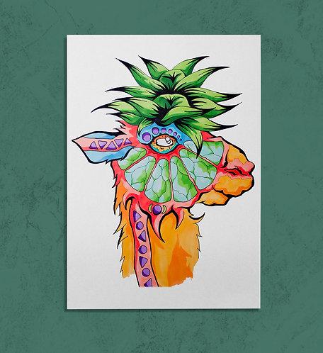 Limey Llama 11x14 PRINT