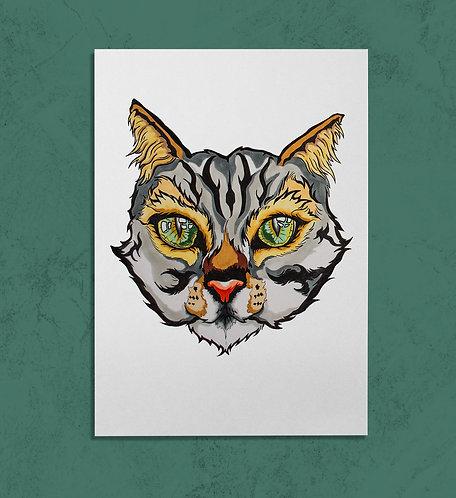 Tabby Cat 11x14 PRINT