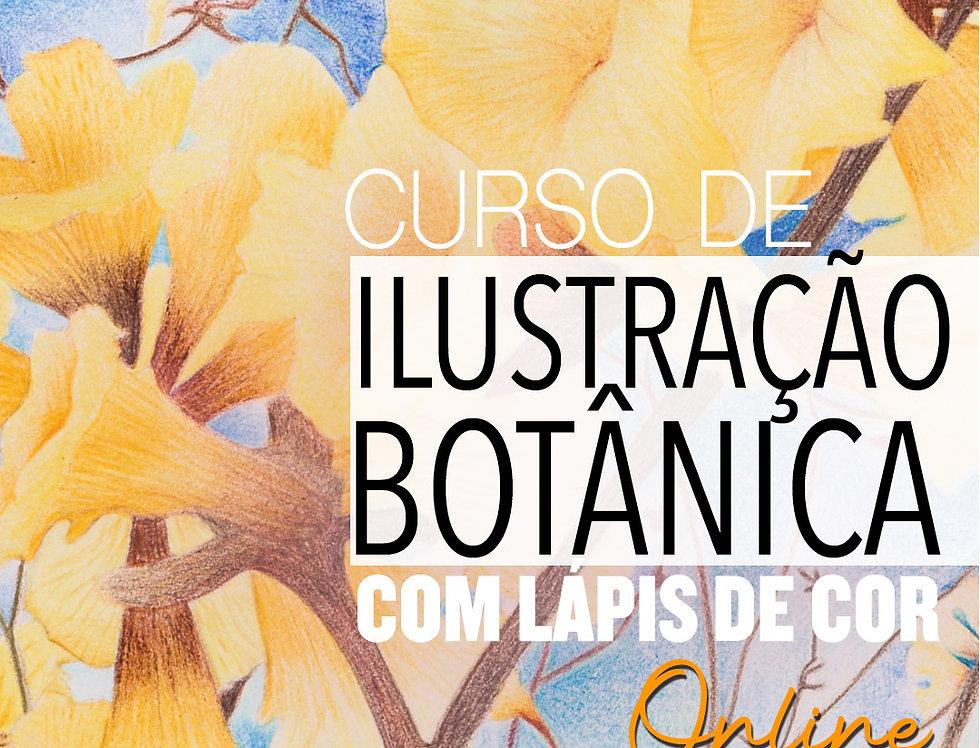 1 mês de curso de Ilustração Botânica Online