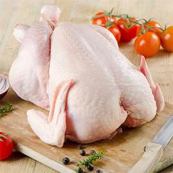 Ayam bulat