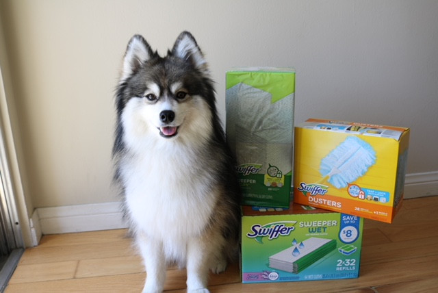 The Dog Days of Summer w/ Sam's Club and Swiffer!